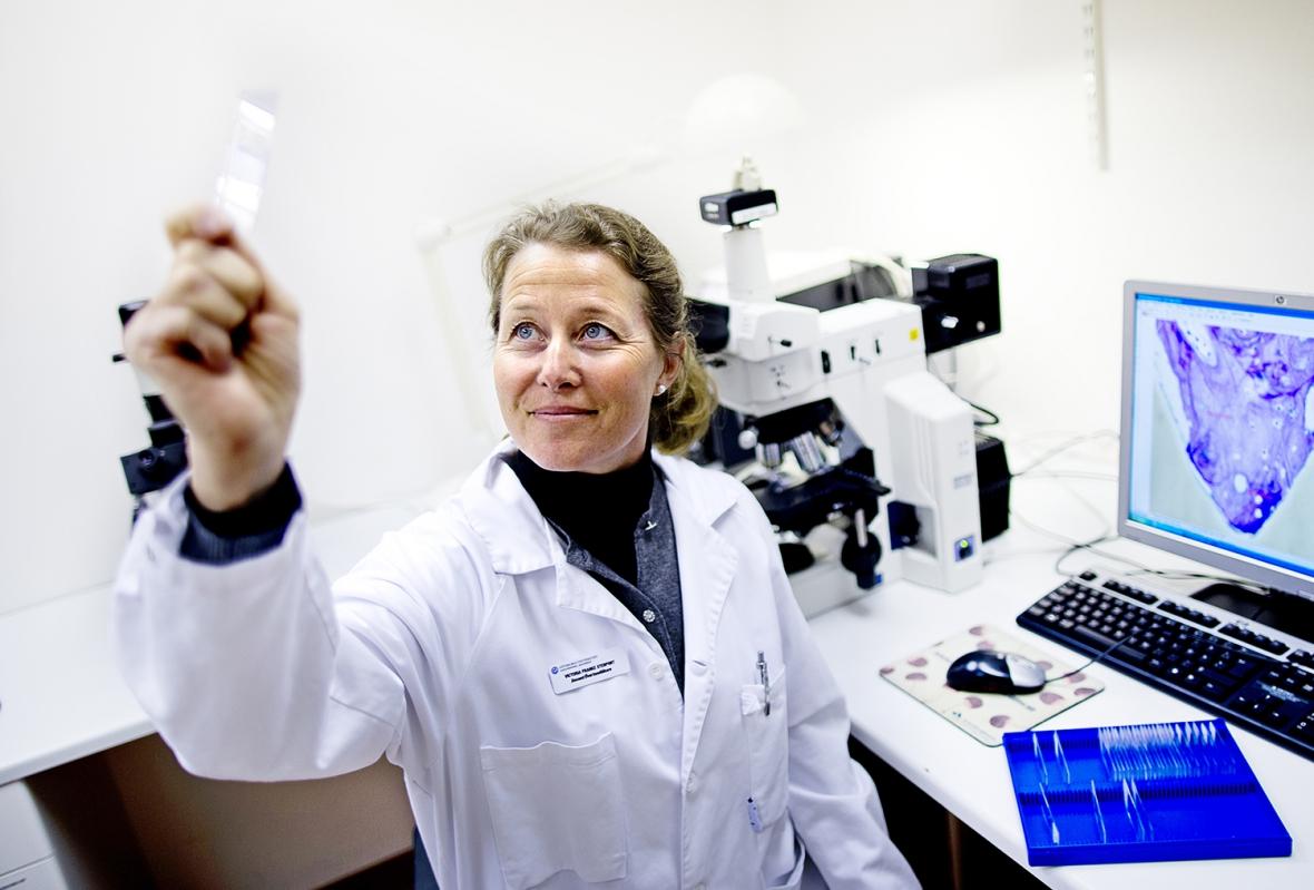 Närgången granskning av nya implantatmaterial