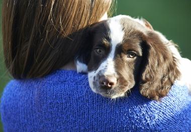 Candida påverkas av husdjur och syskon