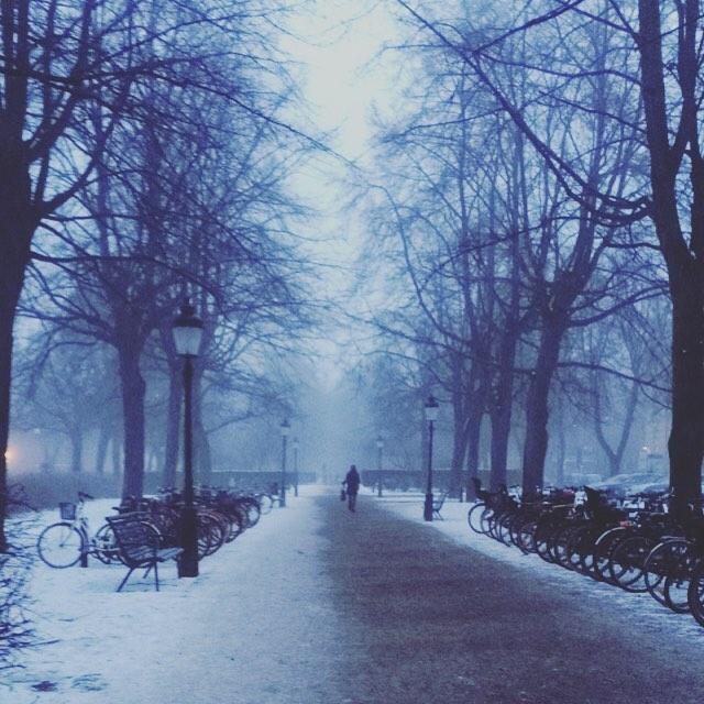 Malmö blir vackert och poetiskt när man ser det såhär.