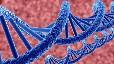 Mutationer påverkar risken för karies