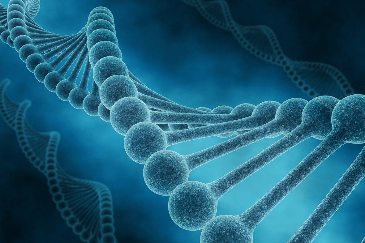 Nya gener bakom agenesi funna
