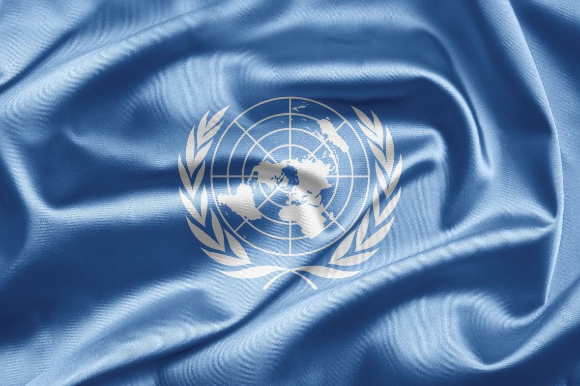 FN intresserat av en miljard tandköttsfickor
